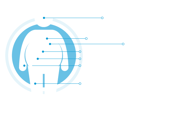 Most common comorbidities of obesity